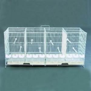 cage elevage